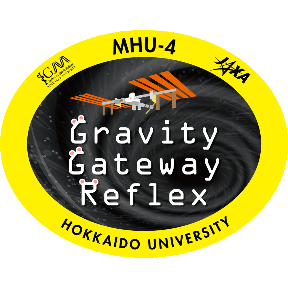 【MHU-4】重力刺激による脊髄背側血管への血管ゲート形成と分子発現の解析