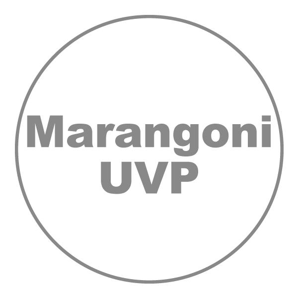 マランゴニ対流における時空間構造