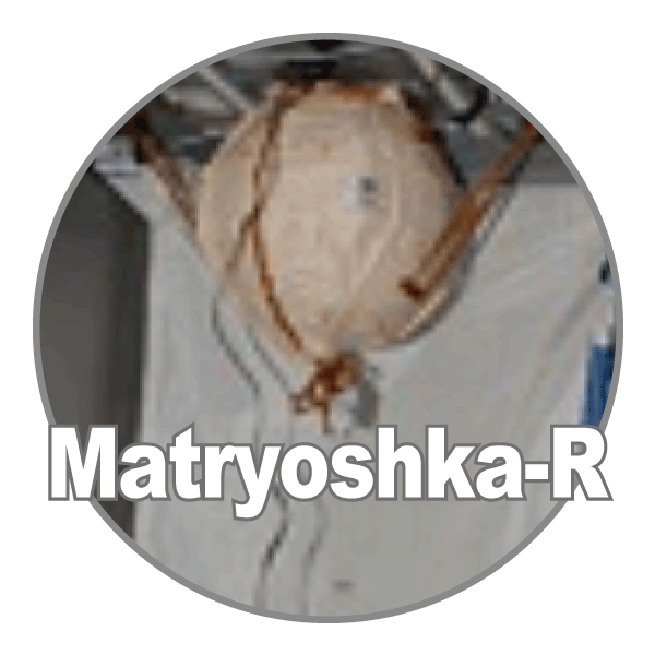 PADLESを用いた国際共同実験(その2) 国際共同宇宙放射線計測「マトリョーシカ-R」実験