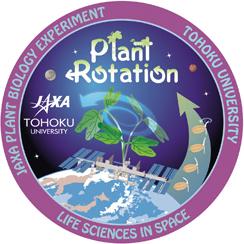 植物における回旋転頭運動の重力応答依存性の検証