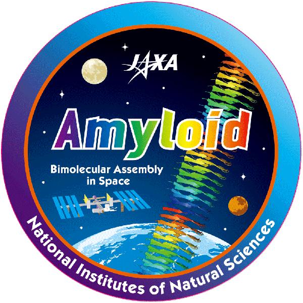 アルツハイマー病発症の要因とされるアミロイド形成の宇宙実験~「きぼう」の微小重力環境では独特なかたちのアミロイド線維ができることを発見~
